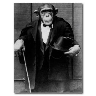 chimpanzee_dressed_in_evening_wear_postcard-rd81d631c6c0e45058fec58f4e6ffe7cc_vgbaq_8byvr_324